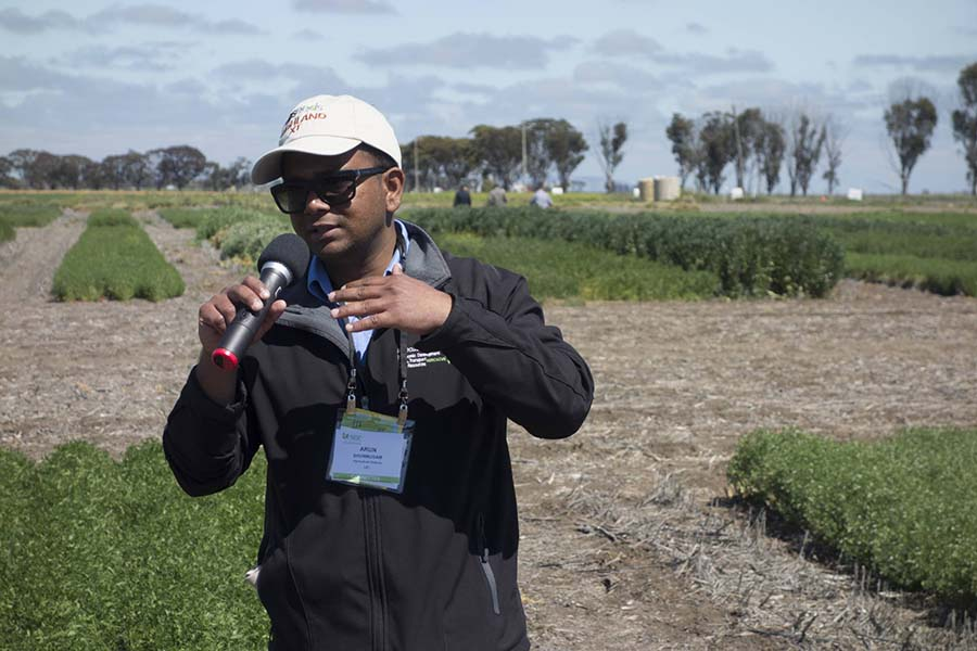 Agriculture Victoria pulse breeder Arun Shunmugam introduced the new PBA Highland XT (PBR) lentil variety at the field day as part of the Australian Pulse Conference. PHOTO Clarisa Collis