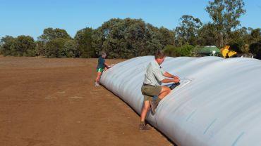 Temporary grain storage tips