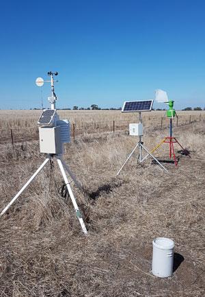 spore traps in the field