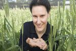 Slugging costly pests with potential to damage plants and contaminate grain