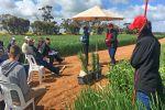 Personal values underpin pest management decisions