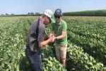 Australian soybean growers learn from US strip tillers