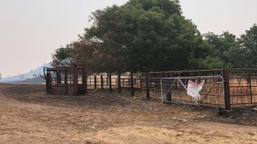 Biosecurity gate signs prove useful in bushfires and emergencies