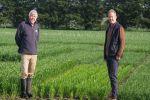 'Seeing is believing': growers invited to push crop yield boundaries