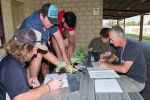 Industry experts advise grain growers how to optimise results from weed spraying programs