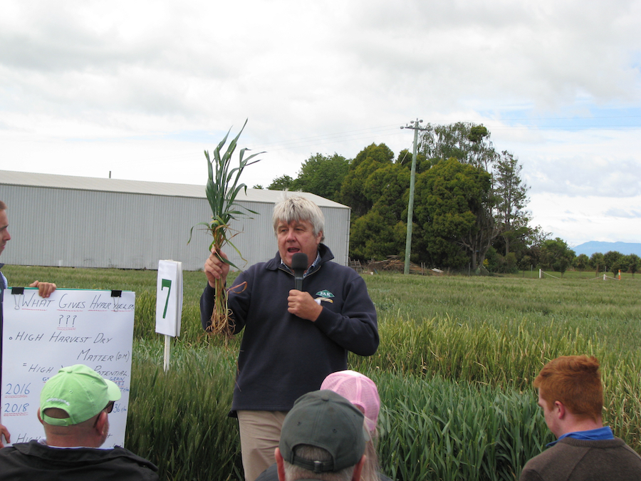 Nick Poole addressing growers at the hyper-yielding cereals field day