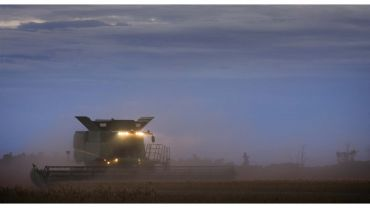 Put safety first this harvest, urges experienced grain grower