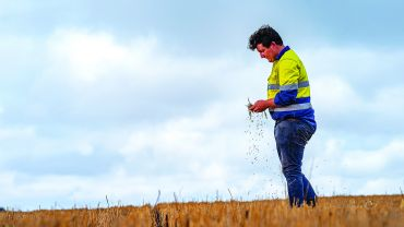 New residue management practice delivers