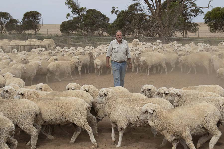 Peter Kuhlmann says it has been several years since his Ceduna property has received its long-term average annual rainfall. PHOTO Andrew Brooks
