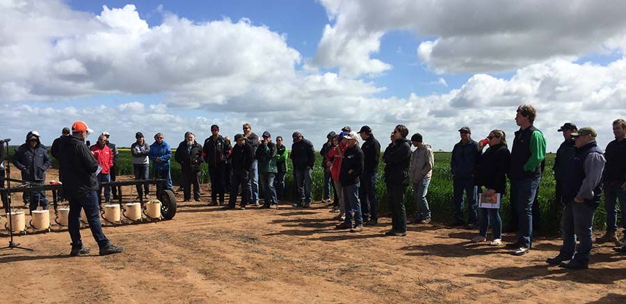 Gurjeet Gill discusses seeding rate manipulation as a weed control tactic at the 2019 Birchip Cropping Group field day in Victoria's Mallee region. PHOTO University of Adelaide