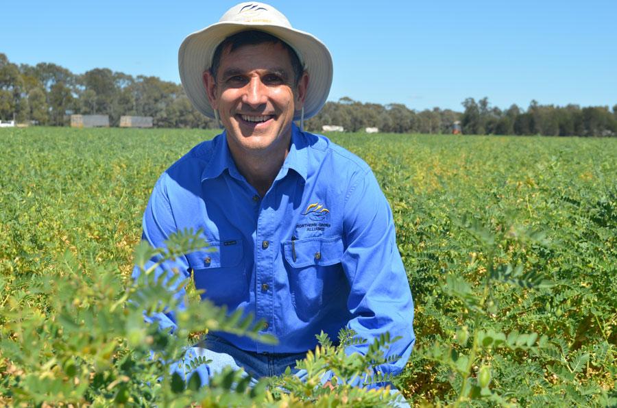 Richard Daniel in a field of chickpeas