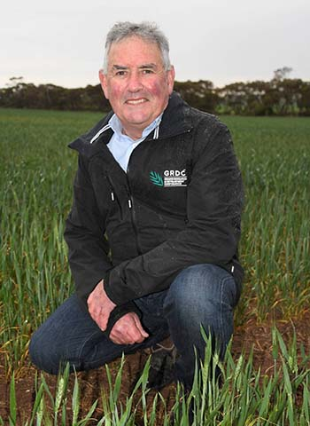 GRDC NVT Manager South, Rob Wheeler, says harvest of the 2019 winter crop variety NVT trials is now complete and data is being made available to growers to help with variety choices in 2020. PHOTO GRDC
