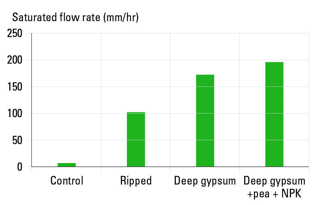 Figure 6: Saturated flow rate of the soils with different amendments in 2018, one-year post-treatment at the Rand site.