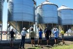 Storage options explained for 'new' grain growers