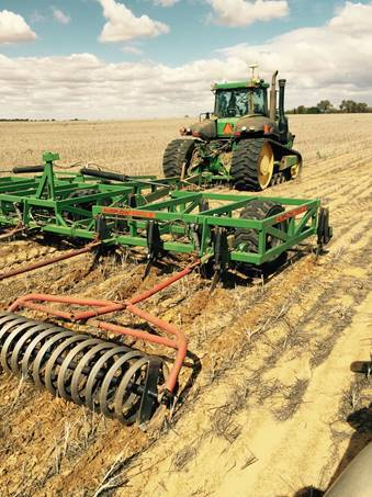 Coil packers typically leave more stubble than heavier rollers. PHOTO Bindi Isbister, WA DPIRD
