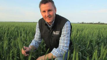 GRDC sets crop pace with five centres of excellence and a focus farm network