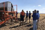 Action learning helps develop informed management strategies for soil constraints
