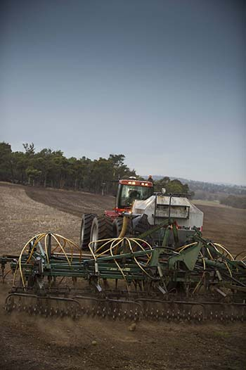 Tim Harrington says crops perform better where they are seeded on mouldboard ploughed country across his family's property at Darkan, WA. PHOTO Evan Collis
