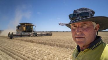 Oats to be supercharged as GRDC ups the ante