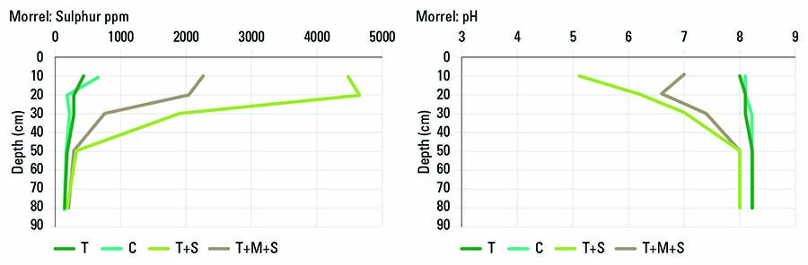 FIGURE 1 Changes in soil (a) sulphur and (b) pH as a result of the control (C), trenching (T), elemental sulphur (S) and composted chicken litter (M) on a Morrel soil at Nangeenan. SOURCE DPIRD