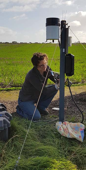 Helen Brodie immersed in collaborative research, led by CSIRO in partnership with SARDI, to help control introduced conical snails. PHOTO SARDI