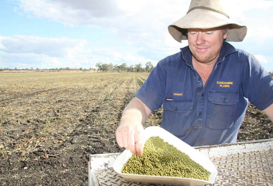 Darling Downs, Queensland, mungbean grower Hamish Bligh with a sample of his produce.