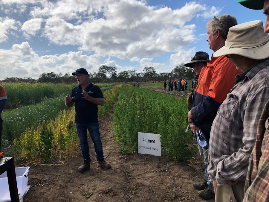 A researcher talks to growers at a field day