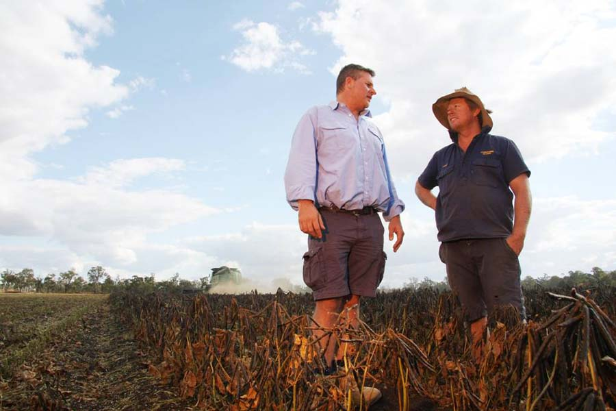 Hamish Bligh, right, with fellow mungbean grower Damon Stirling, from the Woods Group. PHOTO Liz Wells