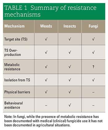 Summary of resistance mechanisms