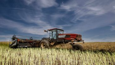 Are you leaving canola profit in the paddock?
