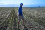 Beware of drought's bite when planning agronomy management this season