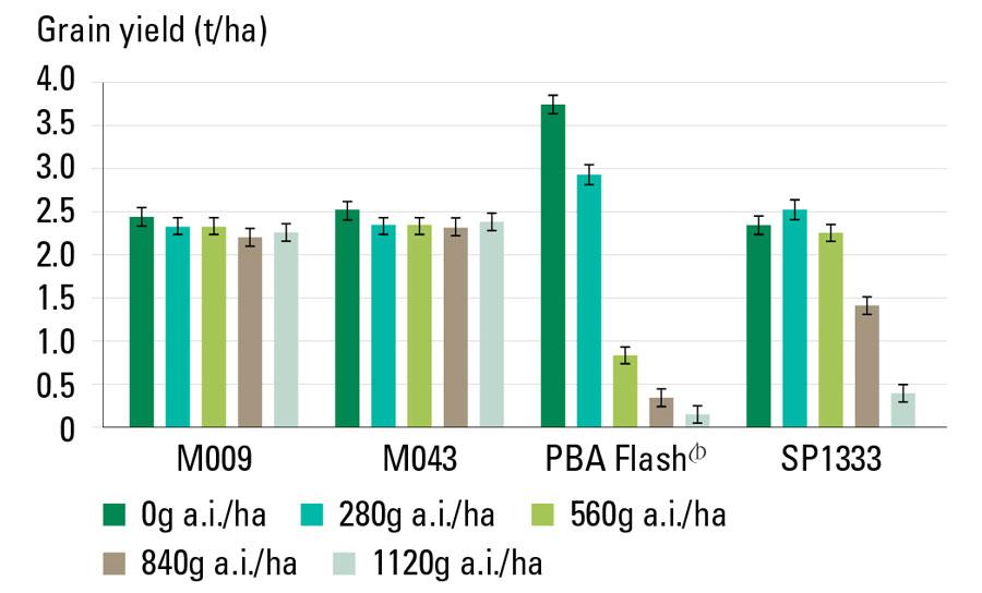 chart showing Group-C herbicide tolerance in lentil lines