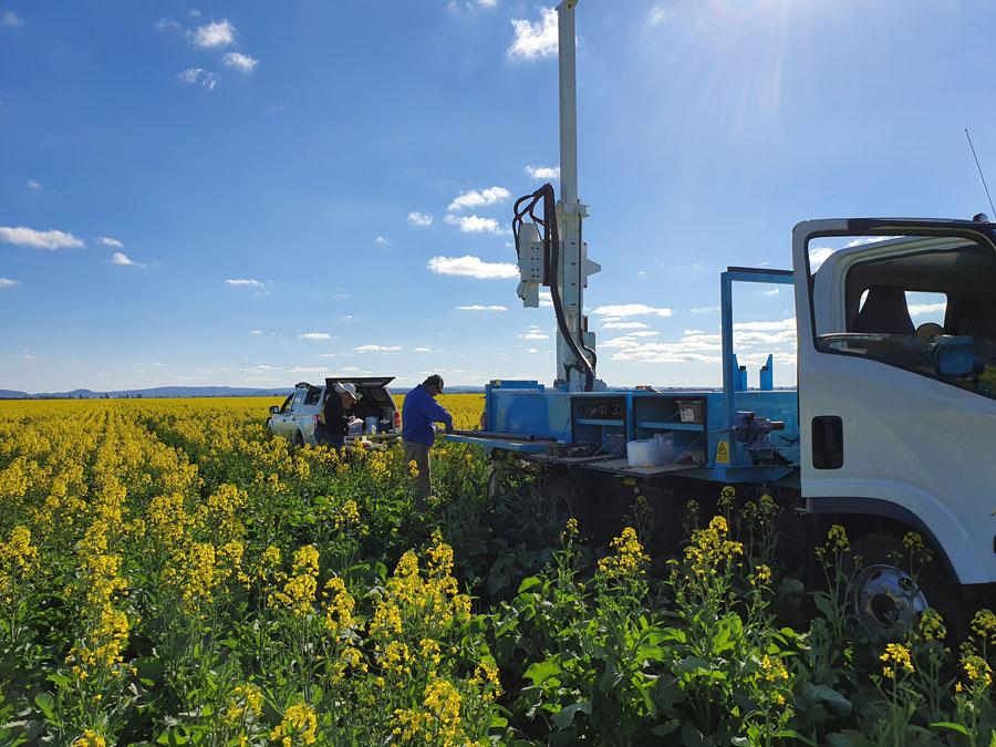 Canola field, researchers testing PAWC