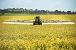 Growers urged to be on disease alert this season