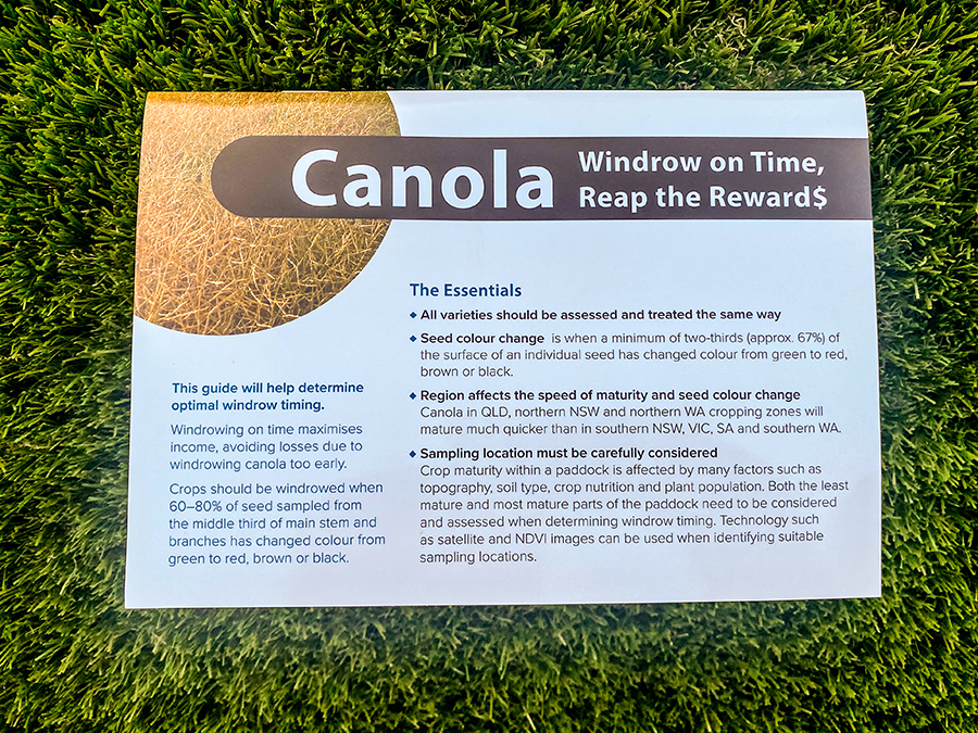 Canola: Windrow on Time, Reap the Reward$