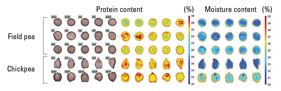 chart of protein and moisture content in grain