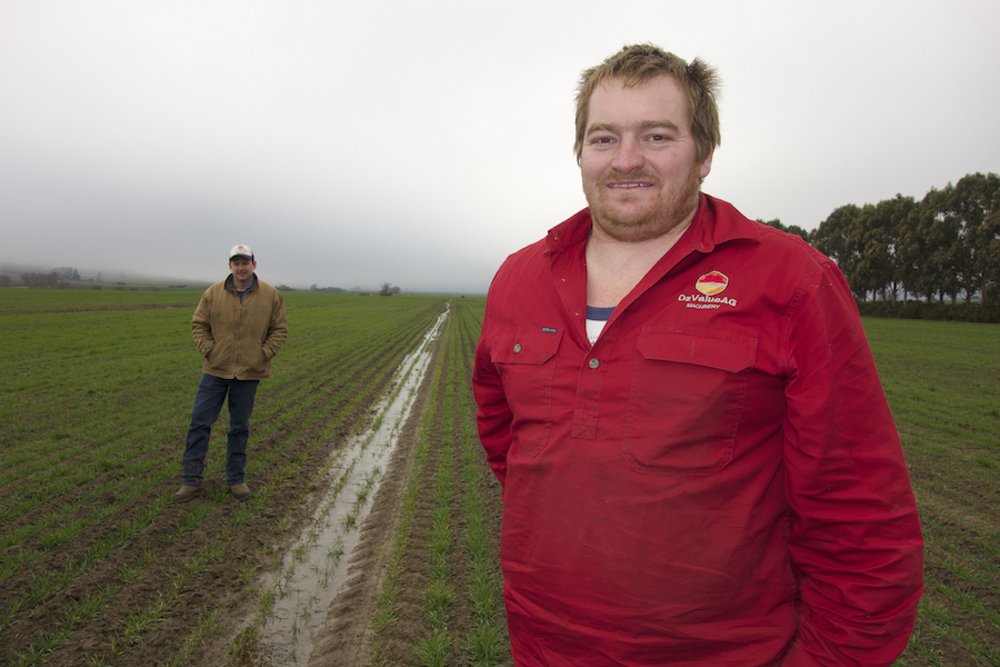 Ben Findlay and Chris Karslake standing in a wheat paddock.