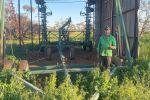 Crop rotations a key to barley grass control