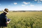 Workshops to develop 'soft' skills for early career agronomists