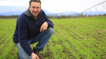 Irrigation and drainage investment help maximise HRZ yields