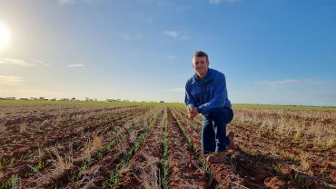 Grower driven to search for new wheat genetics