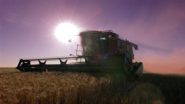 Report finds grains play key role in Australian regional economies