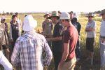 Barley breeding lines gain crown rot resistance