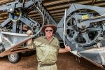 Farm trial to explore direct heading versus windrowing