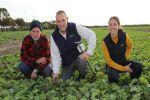 Good seasons blur wetters' benefit